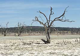 Reducing-Droughts-Floods-01-drought